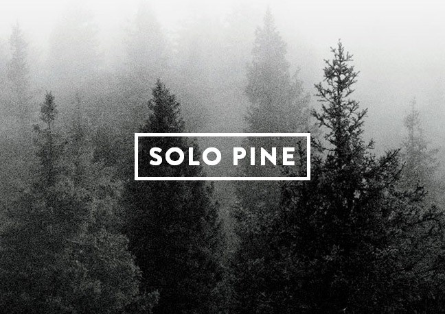 solopine-version2