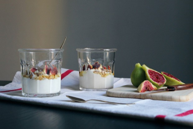 Alba-Garcia-Aguado---Figs-and-yogurt-2---can-alter