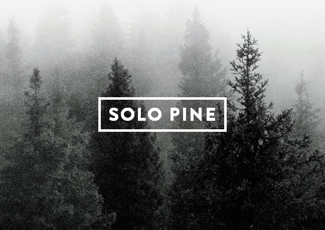 Solo Pine - Premium WordPress Themes for Bloggers
