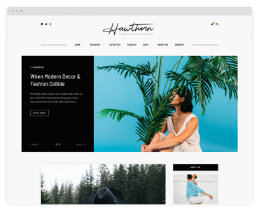 Solo Pine Premium Wordpress Themes For Bloggers